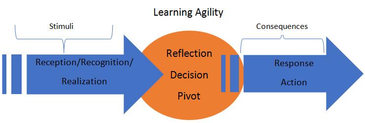 Learning Agility - Talent Agility